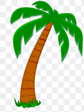 Coconut Tree - Arecaceae Tree Date Palm Clip Art PNG