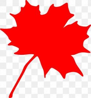 Maple Leaf Silhouette - Canada Sugar Maple Maple Leaf Clip Art PNG
