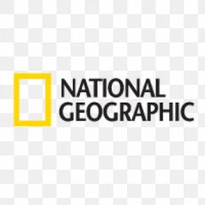 National Vector - National Geographic Society Logo National Geographic Abu Dhabi PNG