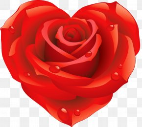 Flower Heart - Rose Shape PNG