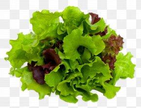 Salad - Mesclun Caesar Salad Lettuce Leaf Vegetable PNG