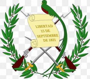 T-shirt - Emblem Of Guatemala Coat Of Arms Flag Of Guatemala National Emblem PNG