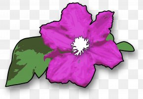 Purple Green Leaves - Leather Flower Drawing Clip Art PNG