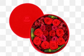 Big Red Rose Gifts - Garden Roses Beach Rose Flower Gift PNG