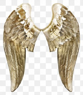 Angel Wings - Angels Wing Butterfly PNG