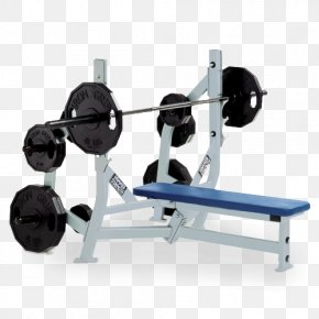 Exercise Bench Transparent - Bench Press Dumbbell Power Rack Physical Exercise PNG