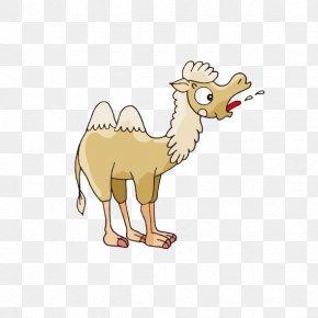 Little Cartoon Camel - Camel Cartoon Clip Art PNG