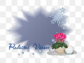 Christmas - Desktop Wallpaper Christmas Greeting & Note Cards Image Sharing PNG