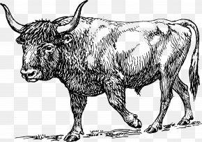 Paper-cut Clipart - Aurochs Texas Longhorn Bull Clip Art PNG
