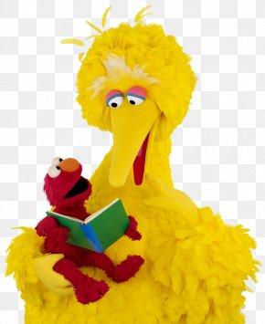 Sesame - Big Bird Elmo Zoe Sesame Workshop Reading PNG