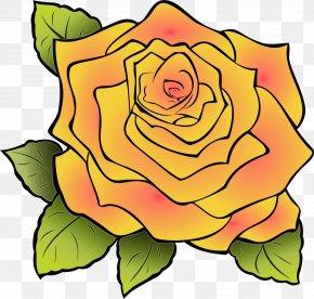 Garden Roses Floral Design Clip Art Cut Flowers PNG