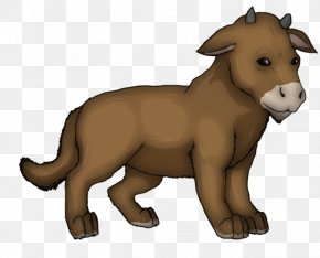 Lion - Lion Moose Saber-toothed Cat Dog Sokka PNG