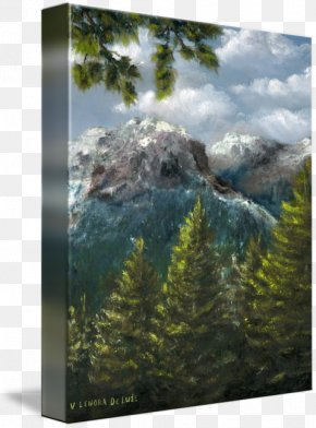 Rocky Mountain - Mount Scenery Landscape National Park Nature Biome PNG