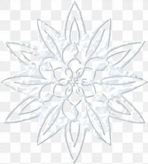 Transparent Snowflake - Snowflake Transparency And Translucency PNG