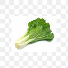 Vegetable - Organic Food Chinese Cabbage Vegetable Bok Choy PNG
