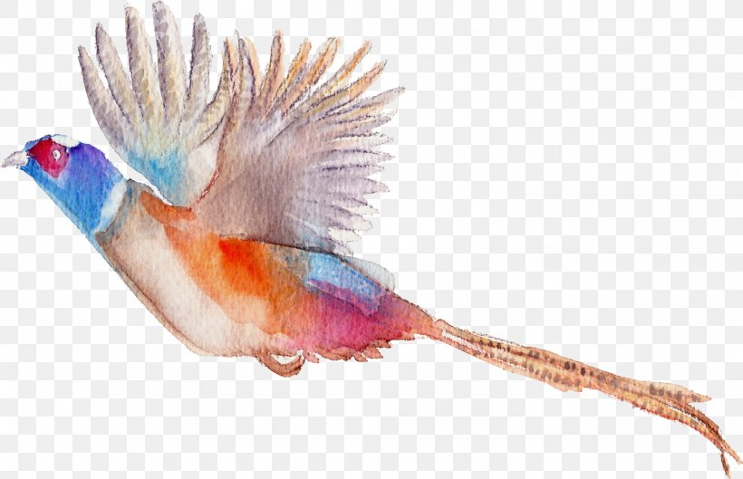 Bird Flamingos Watercolor Painting, PNG, 1500x968px, Bird, Animal, Beak, Drawing, Fauna Download Free