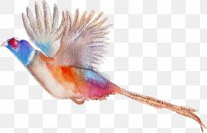 Birds - Bird Flamingos Watercolor Painting PNG