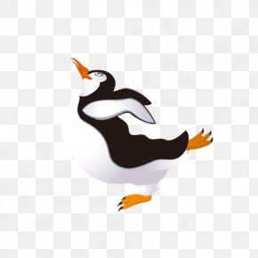 Penguin - Penguin Bird Obesity Puffin PNG