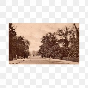 Hampstead Heath Paper Bayswater The Old Bull And Bush North End Tube Station PNG