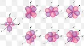 Shape - Atomic Orbital Electron Configuration Molecular Orbital PNG