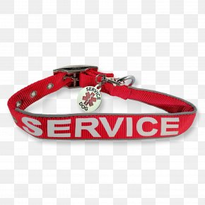 Dog - Dog Collar Leash Service Animal PNG