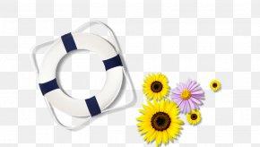 Swimming Swimming Laps - Swimming Download PNG