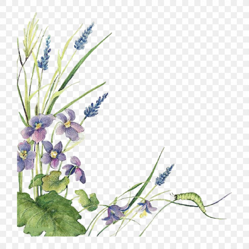 Floral Design Watercolor Painting Clip Art Borders And Frames, PNG, 1024x1024px, Floral Design, Art, Bellflower, Bellflower Family, Borders And Frames Download Free