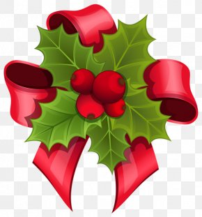 Santa Claus - Mistletoe Phoradendron Tomentosum Santa Claus Clip Art PNG