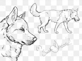 Puppy - Siberian Husky Puppy Alaskan Malamute Line Art PNG