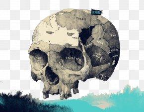 Creative Color Skull Pattern - Germany Visual Arts Drawing Illustrator PNG