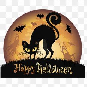 Cobweb Cartoon - Halloween Black Cat Clip Art PNG