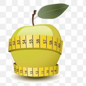 Vector Slimming Apple - Apple Eating Food Clip Art PNG