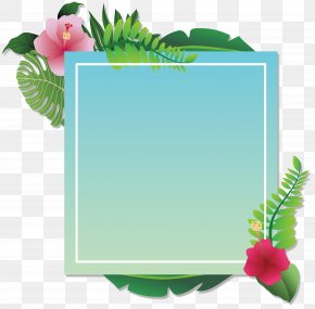 Summer Party Decoration Box - Party Convite PNG