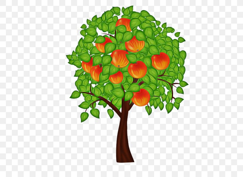 Leaf Plant Flower Tree Plant Stem, PNG, 600x600px, Leaf, Branch, Flower, Grass, Plant Download Free