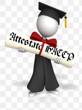 Student - Graduation Ceremony Square Academic Cap Diploma Graduate University 0 PNG