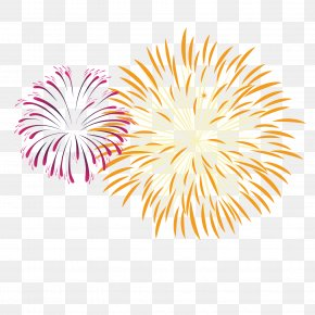Celebration Fireworks - Fireworks Pyrotechnics PNG