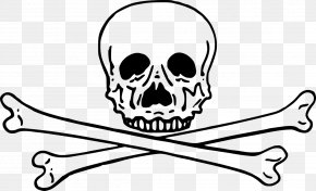 Skull - Skull And Crossbones Clip Art PNG