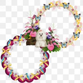 Butterfly Frame - Cut Flowers Floral Design Wreath Butterfly Kisses PNG