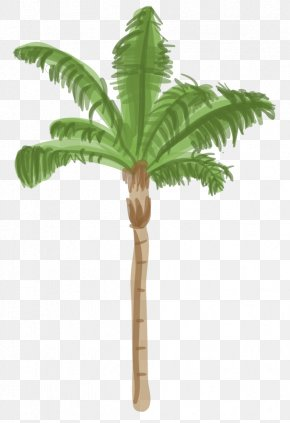 Date Palm - Arecaceae Tree Date Palm Coconut Queen Palm PNG