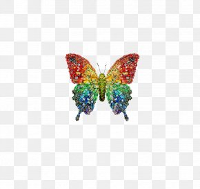 Goods Butterfly Buckle-free Material - Artist Recycling The Arts DeviantArt PNG
