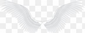 White Angel Wings - Download Angel Pattern PNG