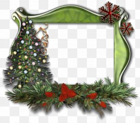 Flower Twig - Christmas Picture Frame PNG