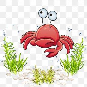 Sea World Marine Life Cartoon Crab - Marine Life Cartoon Royalty-free Clip Art PNG