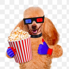Pug Popcorn - Dog Popcorn Cinema Film Stock Photography PNG