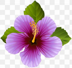 Purple Flower Transparent Clip Art Image - Flower Purple Clip Art PNG