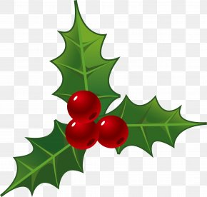 Holly Decorations For Christmas PNG