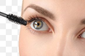 Long Eyelashes - Eyelash Extensions Cosmetics Brush Mascara PNG