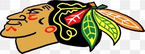 Hawk - Chicago Blackhawks Nashville Predators National Hockey League Boston Bruins Stanley Cup PNG