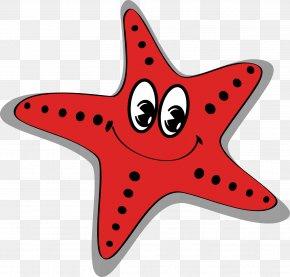 Vector Starfish - Starfish Cartoon Sea PNG