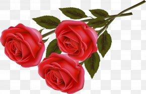 Valentine's Day - Valentine's Day Rose Heart Gift Flower Bouquet PNG